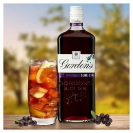 GORDON'S SLOE GIN 0,7 ltr
